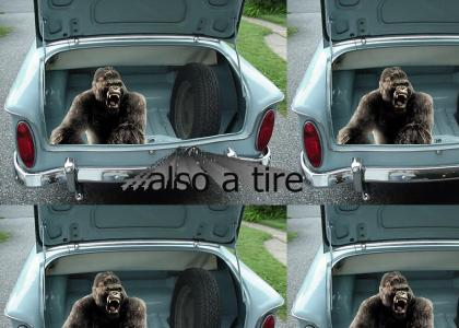 king kong in the trunk