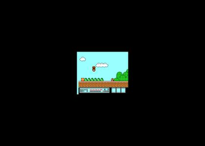 Mario 3: N*gga Copter *FIX*
