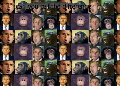 bush =monkey
