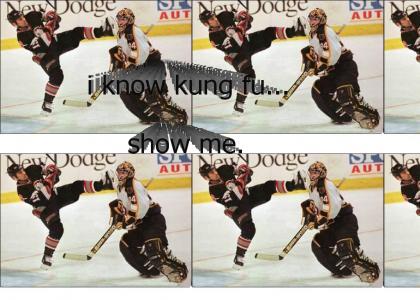 kung fu hockey