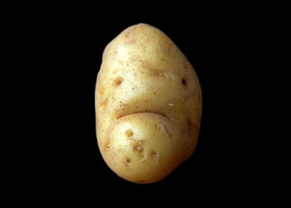 Your Potato Have Just Died