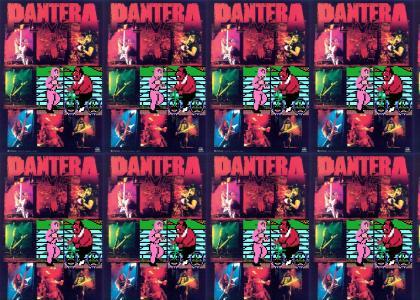 NSMB: AS PERFORMED BY PANTERA