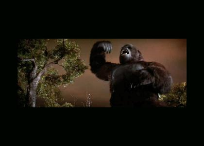 King Kong Breaks It Down