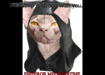 Emperor Meowmatine!