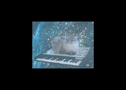 Synthcat is pumping the volume.