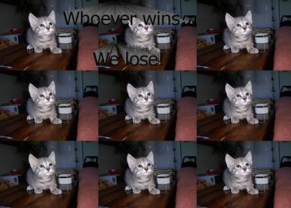 Kitten vs ceiling cat: stare-off