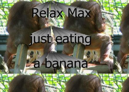 Relax max