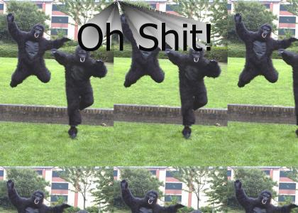 Oh Snap! Gorillaz!