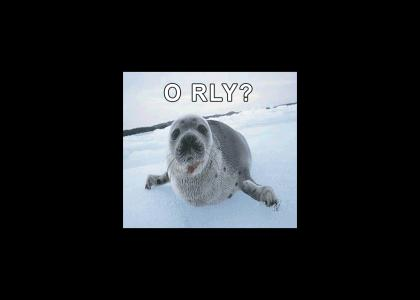 Seal Club O RLY?