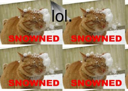 Snowned