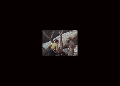 Mortal Kombat: Kirk vs. the Gorn