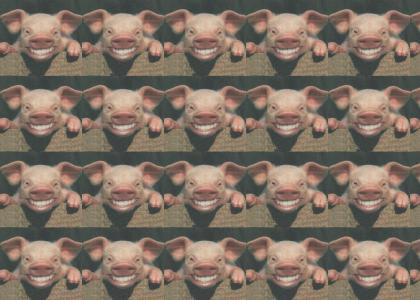Harder, Better, Faster, Stronger Pig