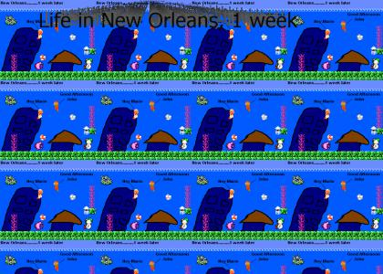 Life after Katrina passes through New Orleans (8-Bit version)