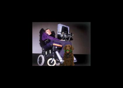 Stephen Hawking gets a dog
