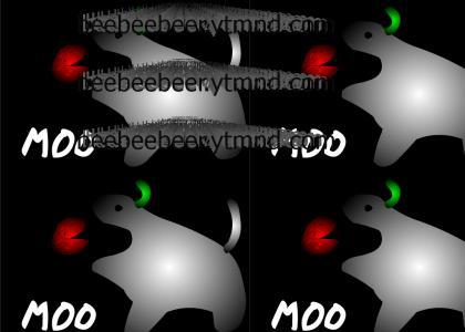 cow eats teh clam lolololololol