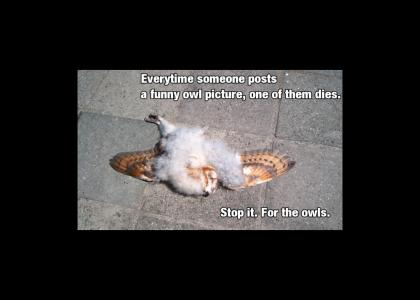 So, Please.. Stop It --- For the Owls.