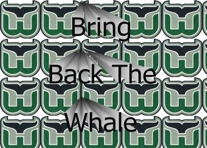 Lets go Whalers!