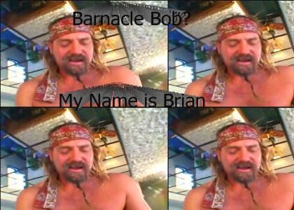 Barnacle Bob?