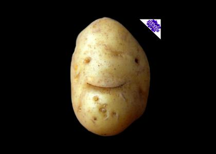 PTKFGS: Your Potato Have Just Lived