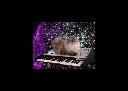 Cat on Crack on Keyboard in Space