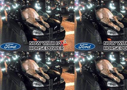 Ford 171 Horsepower