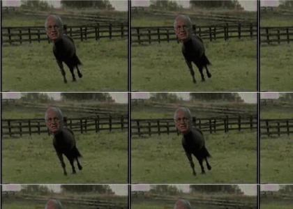 HORSE/DICK!!!