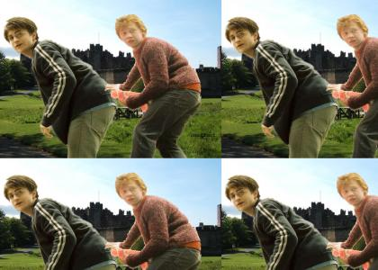 harry poter ron gay