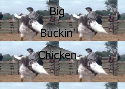 Big Buckin' Chicken