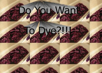 Do You Want To Dye!!??