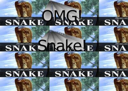 Snake in Smash Bros.?!?!?!?