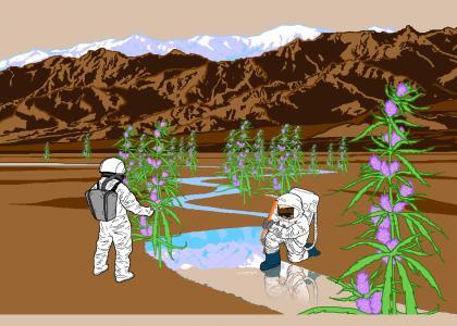 Life on Mars pt. 5