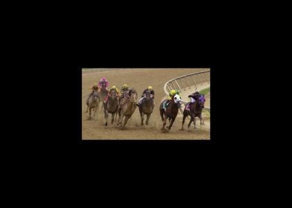 Marital Horse Race
