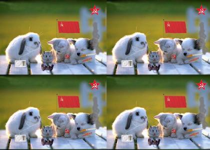 Omg, cute animal communist hypocrites!