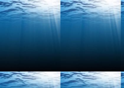 Aquatic Ambiance