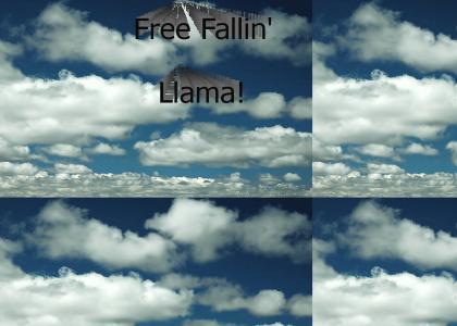 Freefalling Llama
