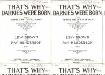 That's Why Darkies Were Born!