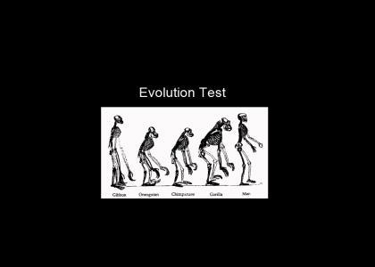Evolution Test