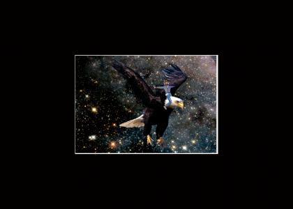 Kanye's Big eagle