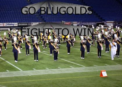 GO BLUGOLDS FIGHT TO WIN