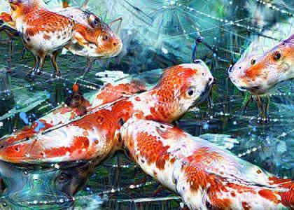 Deep Dream Fish