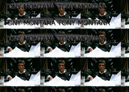 TONY MONTANA TONY MONTANA TONY MONTANA TONY MONTANA TONY MONTANA