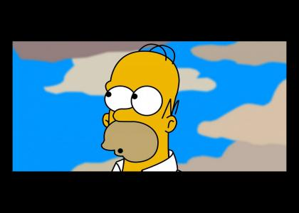 Homer yells DOH!