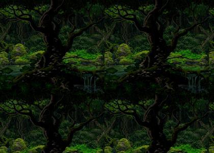 Secret of the Dense Woods