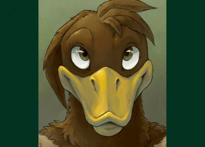 A Platypus Stares into your Soul