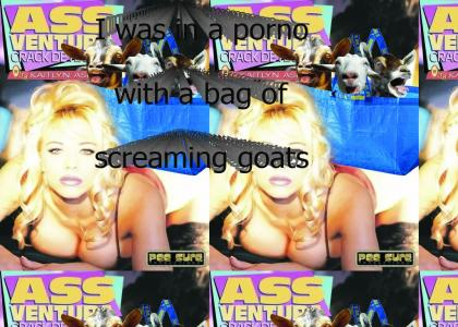 I was in a porno with a bag of screaming goats