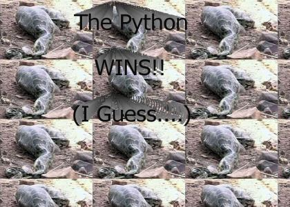 Python VS Deer