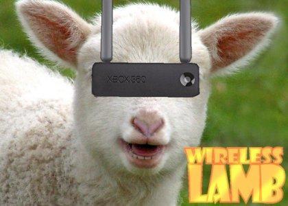 Wireless LAMB