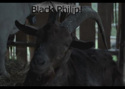 Black philip