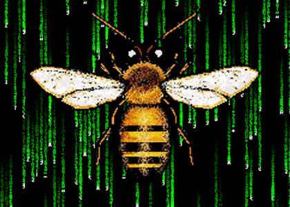 Load the Bee Program