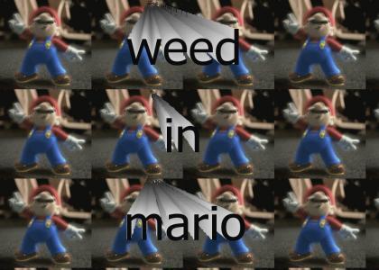 super mario fuckan weed weed